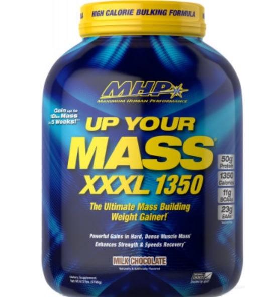 Protein Gainer Pour la Musculation
